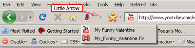 Video DownloadHelper - choose the flv extension